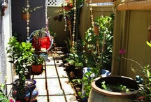 Small but funky gardens / by Jacqueline Parker