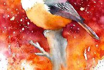 Bird images / Birds