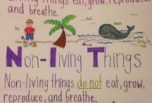 living/non-living