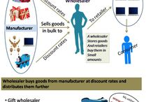 Infographics / Infographics for Wholesalerdirectory