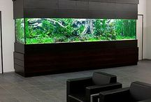 Aquascaping / A showcase of aquarium design inspiration.