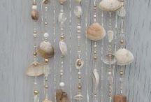 deniz kabugu