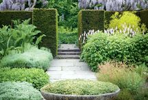 Captivating Gardens / Gardens are restful to look at. They have neither emotions or conflicts, they are earth laughs.