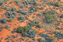 Paysages Aborigènes / Art Aborigène d'Australie. Aboriginal art. Paysages des territoires Aborigènes. Galerie d'art.