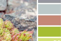 Color Stuff / by Glennda Parker
