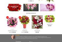 eCommerce Website Design Portfolio's - FutureWorkz