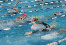 Free USA Triathlon Webinars / by USA Triathlon