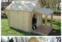 My dogs house