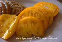 Great Performing Vegetables / by Growing The Home Garden
