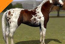 Sims 3 Horses: Realistic Horses