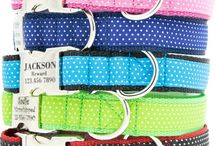 Pet Products + Accessories