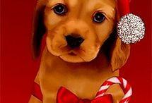 julekort og nyttårskort