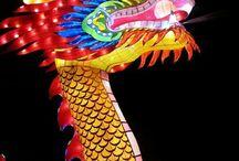 chinese light festival / the chinese light festival in Utrecht from 21 november 2014 till 4 january 2015. it was held in the botanic garden of the utrecht university