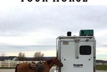 Traveling With Your Horse / Traveling with your horse and the planning that is required to do it.