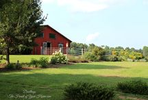 FARM LIVING / by Dwellings The Heart of Your Home