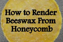 Bees / Ideas and tips for the bees