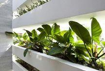 interiors + indoor gardens