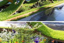 Jardines raros