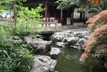 Japonskie domy