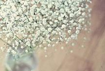Wedding Ideas / by Sharon Bates- Riley