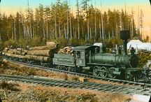 Trains - Logging Railways / Logging Railroads
