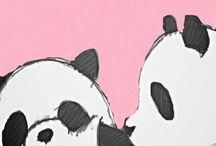 PANDA ❤❤❤❤