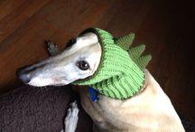 Doggie wardrobe / Dog's fashion