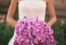 Radiant Orchid: Pantone 2014 Color of the Year
