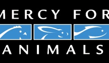 Organizations that care about the animals