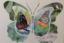 Flip Flop Butterfly Stencil - Lea France Fans / All the beautiful creations from Lea France Fans!  / by Lea France Scrapbooking   European Style Photo Layouts Stencils + Creative Scrapbooking ideas + + free video tutorials for beginner scrapbookers