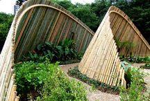 wind shelter garden design