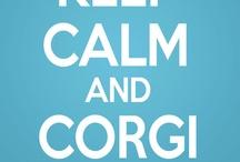 OMG Corgi's! / by Shannon Lynn