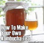 Health / Kombucha Tea