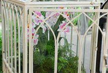 Wardian cases, terrariums & indoor greenhouses