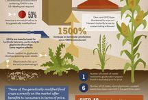Infographics Wellness, Health,Food / Infographics Wellness, Health,Food