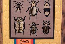Beetles & Bugs Stampin' Up!