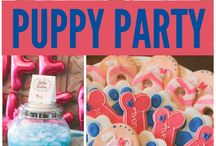 Party for puppy