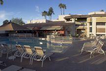Travel / Resort in Scottsdale, AZ / by Scottsdale Camelback Resort