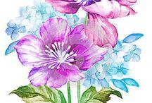 dekopa güzelliği
