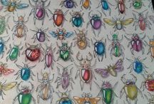Enchanted Forest - Bugs
