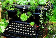 Gardens / by GregandDebbie Blake