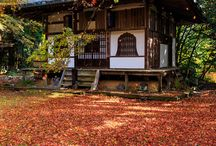 Domek szoguna