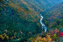 Canyon - West Virginia