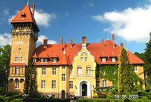 """Rogi - Pałac / Pałac w Rogach powstał w latach 1906-1913 i pierwotnie był letnią rezydencją mieszkalną lub """"zameczkiem"""" myśliwskim Adolfa Friedricha Augusta von Waldow. Od 1976 roku pałac w Rogach sprawuje funkcję ośrodka szkoleniowo-wypoczynkowego."""