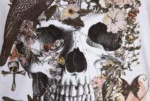 Skull ^^
