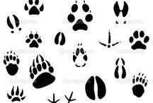 hunting.animals