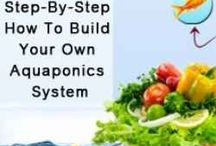 Garden ☆ Hydro & Aquaponics / Gardening with water. / by Jenaria's Realm