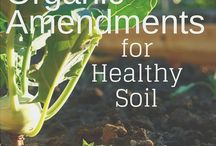 Healthy soil and bed prep / Building healthy organic soil and flower bed preporation