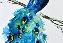 B bilder fåglar