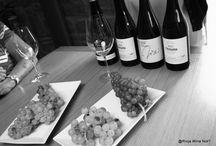 Wine tastings by Rioja wine not? / Wine tastings during our wine tours in Rioja